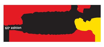 denain_logo